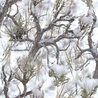 b27cam-000167_mc2_snow