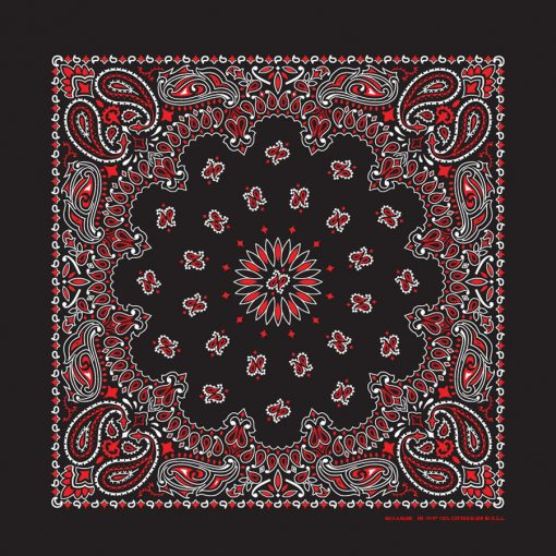 B22PAI-000004-Black & Red Paisley