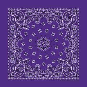 B22PAI-000013-Purple Paisley
