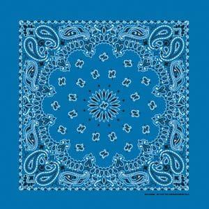 B22PAI-000043-Mirage Blue Paisley