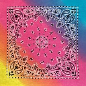 B22PAI-100045 Pastel Paisley
