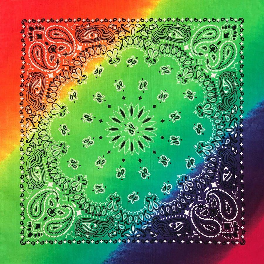 B22PAI-100046-Rainbow-Paisley