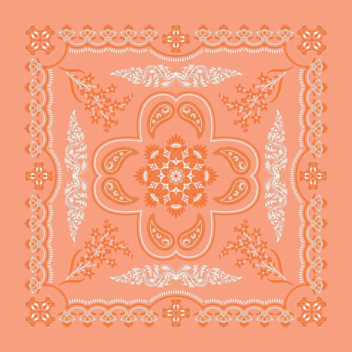 B27PAI-000539-Floral-Paisley-Coral