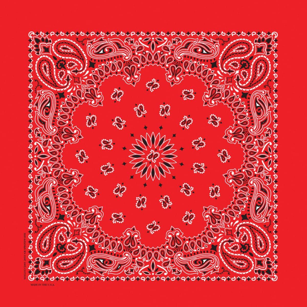 B35PAI-000001-BANDANNA-PAISLEY-35-INCH-BANDANA-RED