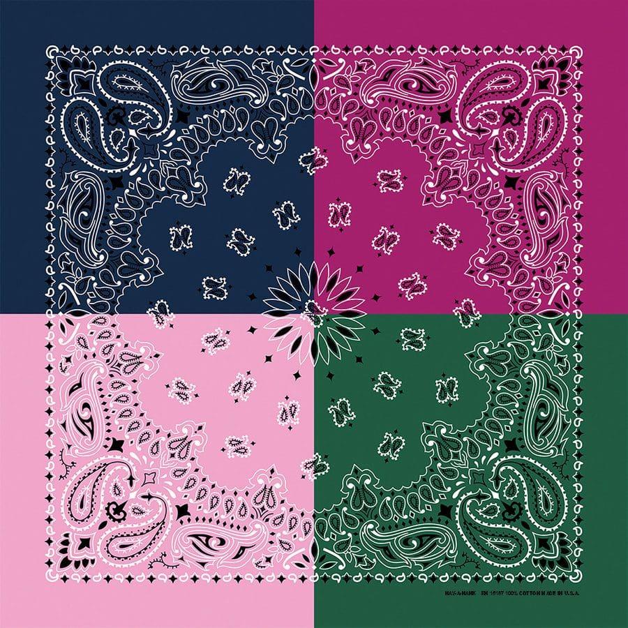 Quad-Paisley-Spring-B22PAI-000215