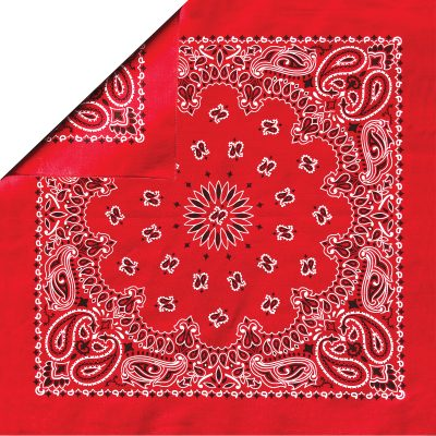 b22pai-000001_red_paisley_folded